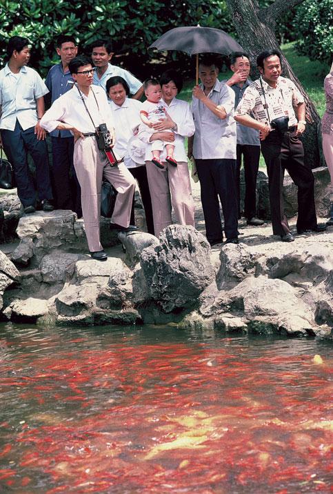 Goldfish (Jīnyú 金鱼)