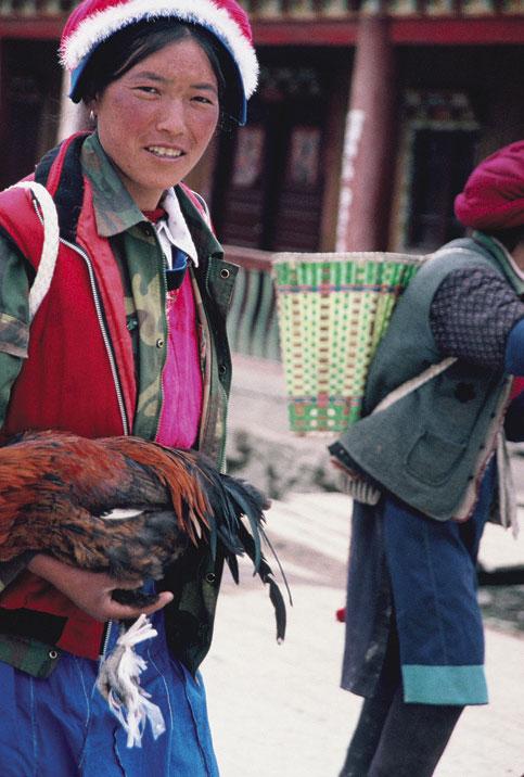 Sino-Tibetan Languages (Hàn-Zàng yǔxì de yǔyán 汉藏语系的语言)